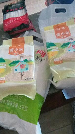 北纯 有机 黄小米(小黄米 月子米 小米粥 粗粮杂粮 大米伴侣)400g 晒单图