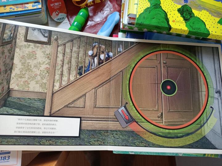 葛瑞米·贝斯幻想大师系列:眼灵灵 心灵灵 提升孩子的想象力、探索力 晒单图