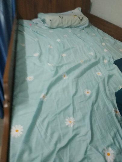 南极人 全棉四件套小清新床品套件学生宿舍三件套单人床上用品纯棉双人被罩床单床笠 顽皮豹 1.5m床适用(2*2.3m被套)四件套 晒单图