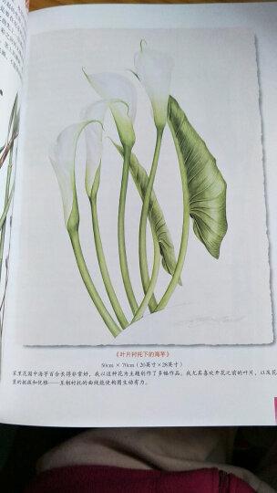 世界绘画经典教程:Billy Showell的极致水彩花卉教程 晒单图