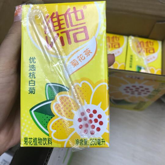 维他奶 维他菊花茶饮料250ml*16盒 滋润茶饮料 整箱装夏日送礼佳品 晒单图