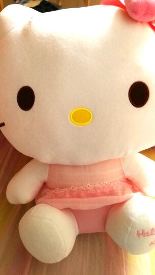 Hello Kitty凯蒂猫 毛绒玩具KT公仔玩偶送女友表白生日礼物布娃娃 9