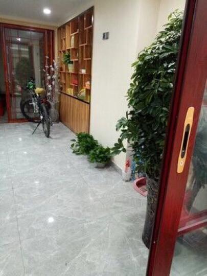森摩瓷砖客厅电视背景墙通体大理石地板砖加厚800*800地砖 加厚通体大理石-银蟹灰(片/元)(2片/箱) 晒单图