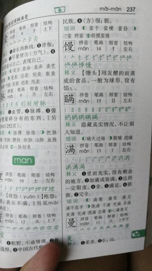 新华字典(第11版 附四角号码检字表 大字本) 晒单图