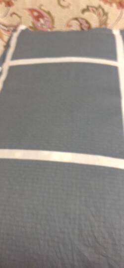 九洲鹿 枕套家纺 全棉枕套 斜纹枕头套枕芯套 休闲午后 一对装 48*74cm 晒单图