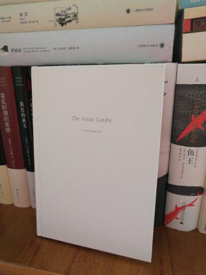 文学名著:了不起的盖茨比(2015版) 晒单图