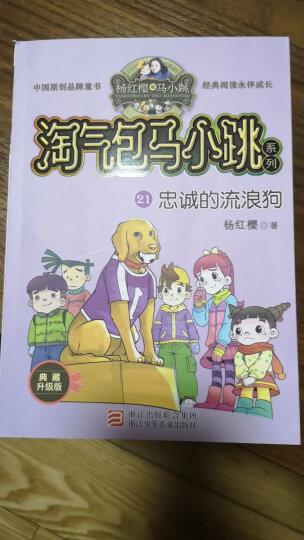 杨红樱淘气包马小跳系列典藏版:忠诚的流浪狗(典藏版) 晒单图