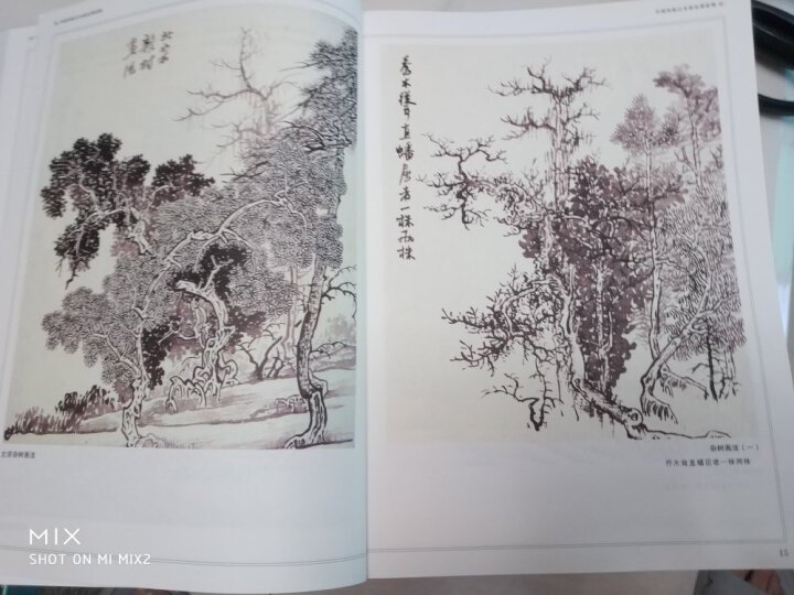 中国传统山水画法课徒稿 晒单图