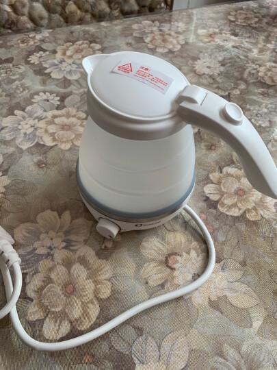 卓朗 Zoomland/美国 F-011E迷你可折叠旅行便携式烧水壶电热水壶便携水杯小容量养生茶具 F-011E 晒单图
