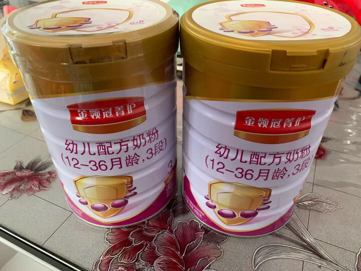 伊利奶粉 金领冠菁护(原呵护)系列 幼儿配方奶粉 3段900克(1-3岁幼儿适用)新老包装随机发货 晒单图