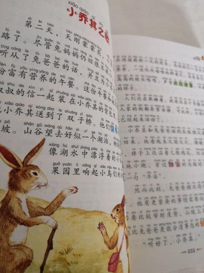 兔子坡·彩图注音版/小学生语文新课标必读丛书 晒单图