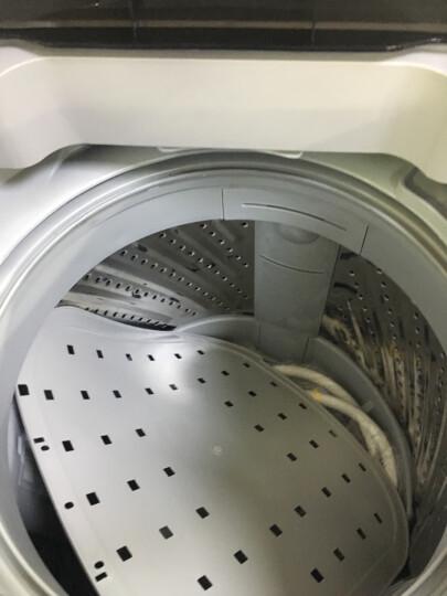 美的(Midea)波轮洗衣机全自动 5.5公斤 迷你洗衣机 一键桶自洁 品质电机 不锈钢内桶 MB55V30 晒单图