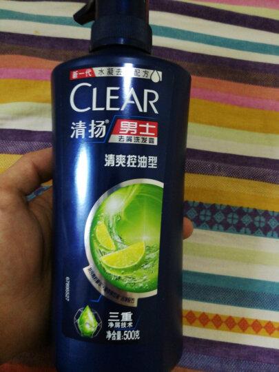 清扬(CLEAR)洗发水 男士去屑洗发露清爽控油型500g(新老包装随机发)(氨基酸洗发) 晒单图