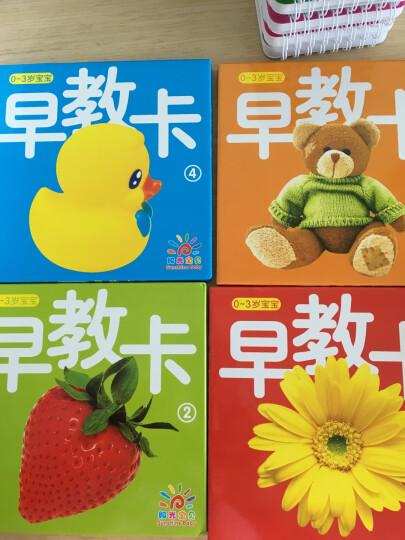 阳光宝贝 0-3岁不怕撕宝宝早教卡(套装全4册) 晒单图