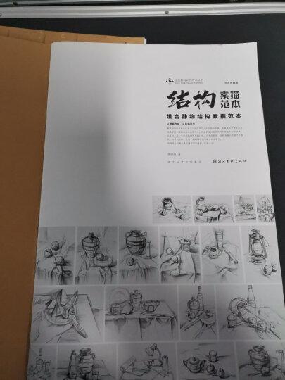 造型基础训练方法丛书5:组合静物结构素描范本(黄金典藏版) 晒单图