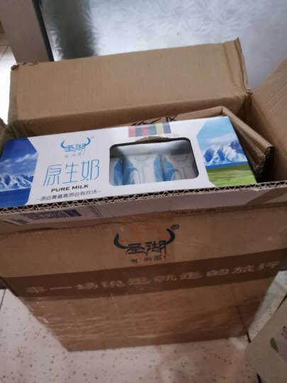 圣湖 青海大牧场原生奶250ml*12盒 儿童早餐奶高原牧场奶整箱包邮 晒单图