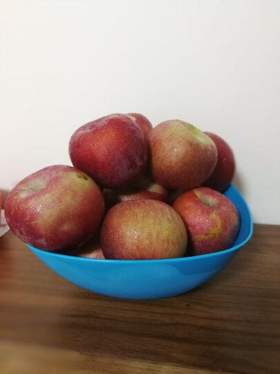 欧润哲 糖果水果收纳盘 方形杂物蔬果瓜子PP水果盘果篮 大号 3只装 晒单图