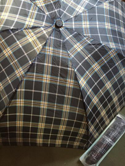 天堂伞 苏格兰风格格子三折钢杆钢骨晴雨伞 米黄 晒单图