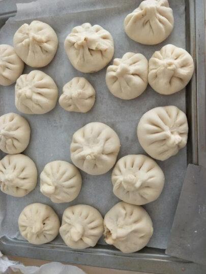 安琪高活性干酵母粉 做包子馒头面包即发孝母发酵粉烘焙原料家庭装5g 晒单图