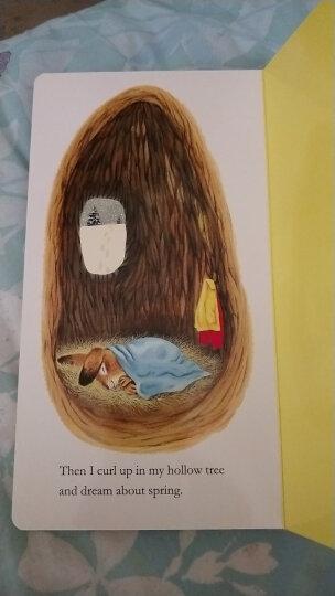 I am a Bunny 经典四季绘本 我是一只兔子 启蒙必备 进口原版 童趣绘本学前教育 硬纸版书 晒单图