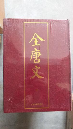西周的灭亡——中国早期国家的地理和政治危机(增订本) 晒单图