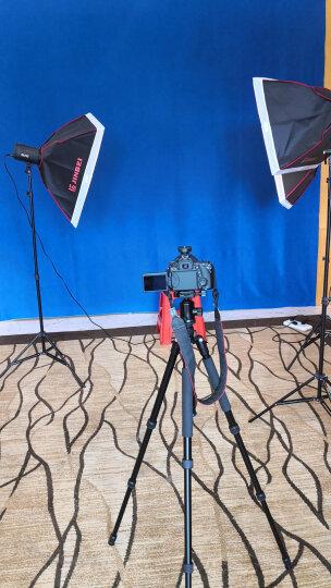 金贝SPARKII400w摄影灯柔光箱摄影棚闪光补光灯电商产品静物服装拍摄人像儿童柔光灯拍照灯 金贝三灯套装一(人像静物) 晒单图