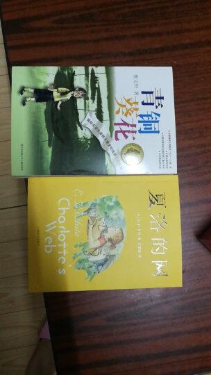 风靡日本的纸艺花手作书:我的花花世界 晒单图