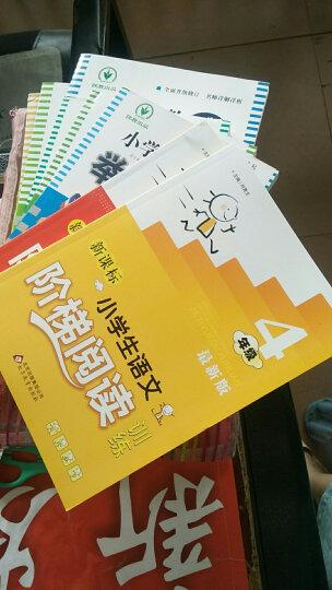 新课标小学生语文阶梯阅读训练 4年级小学生课外书籍读物实用同步阅读能力培养练习册练习题提升 晒单图