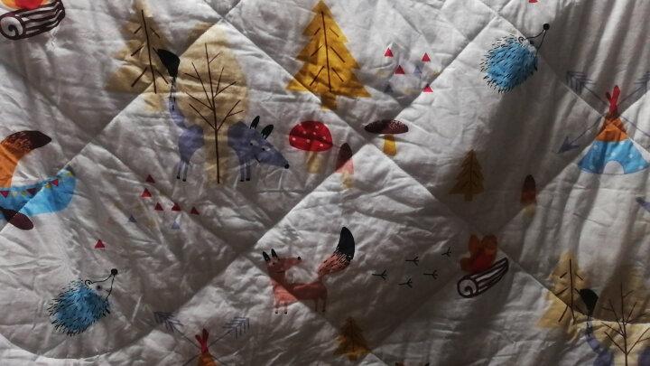 象宝宝(elepbaby)儿童被子幼儿园被褥全棉婴儿被春秋幼儿园被子120X150CM(动物开会) 晒单图