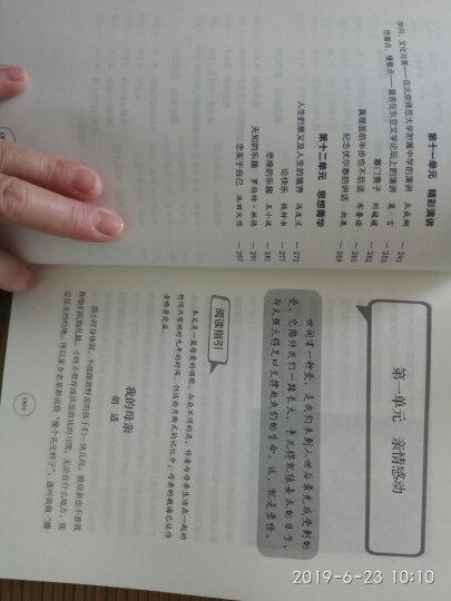 语文太重要·初中卷:初中文言拓展+初中作文进阶+初中现代文赏析(套装共3册) 晒单图