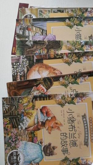 正版彼得兔的故事绘本全8册 彩图注音版3-6岁儿童读物经典睡前故事书大字幼儿园课外阅读书籍 晒单图