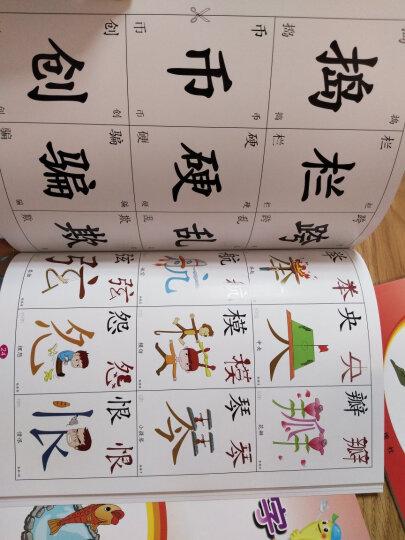 儿童早教识字宝宝认字卡婴幼儿识字看图直映认字幼小衔接幼儿园形象学字直映识字 2-6册识字+同步阅读送光盘散装 晒单图