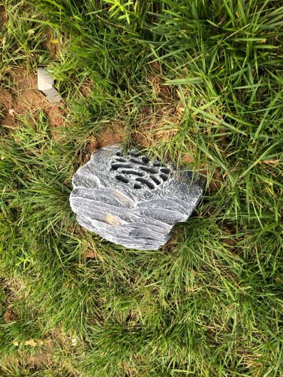 菱声(LINGSHENG) 户外草坪音箱室外防水喇叭公园仿真石头音响园林景观音箱花园草地假山喇叭 LD-615E 晒单图