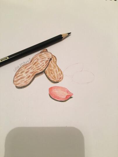 再不学画画我们就老了:我的第一本彩铅书 晒单图