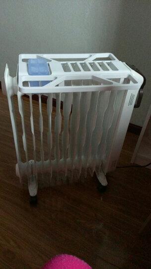 先锋(Singfun)取暖器/家用电暖器/电暖气/11片热浪型电热油汀 DYT-SS1 晒单图