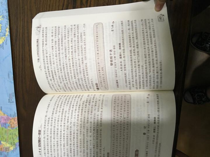 语文阅读得高分策略与技巧(小学卷) 晒单图