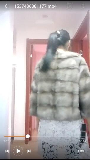 robertosclub 整貂皮草水貂女短款大衣海宁裘皮外套新款 黑色 XL 晒单图