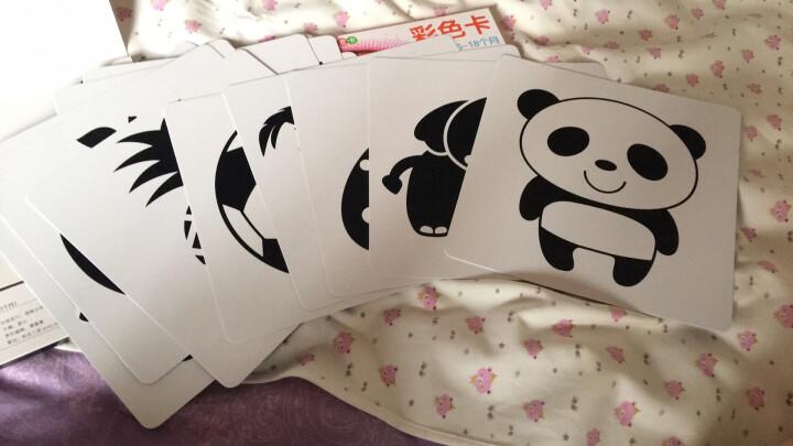 阳光宝贝黑白卡片新生儿视觉激发卡彩色卡婴儿启蒙认知早教卡闪卡 黑白卡+彩色卡 0-18个月 晒单图