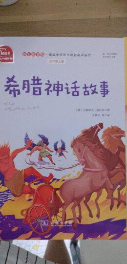 中外神话传说 彩插励志版  语文新课标必读无障碍阅读 红皮,智慧熊图书 晒单图