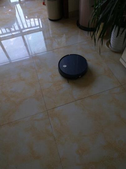 海尔(Haier)TT53手持版智能扫地机器人家用全自动湿扫拖一体机超薄吸尘器吸小米粒静音APP智控 TT53(增配无线手持) 晒单图