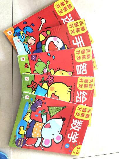 邦臣小红花·头脑潜能开发3~4岁(绘画+手工+数学+智力+迷宫)(套装共10册) 晒单图