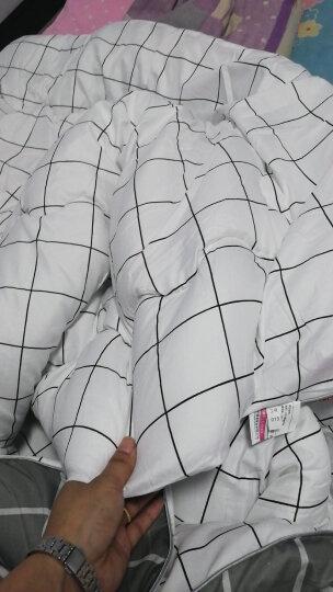 百富帝(byford)被子被芯 单人纤维四季被亲肤加厚棉被春秋被 灰白格 152*218cm 晒单图