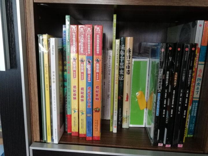 迪士尼家庭绘本馆:小熊维尼和他的朋友们(套装共6册) 晒单图