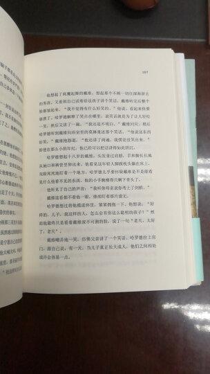 一个人的朝圣(精装版 全球畅销400万册,经典畅销小说,2012年布克文学奖) 晒单图