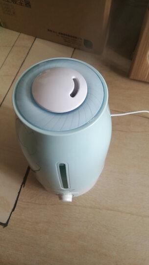 小熊(Bear)加湿器卧室迷你 家用办公室空气加湿器大雾量 桌面静音香薰机 3升容量 双重净化 JSQ-A30T2 晒单图