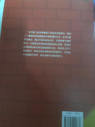 金字塔原理大全集老版(套装共2册) 晒单图