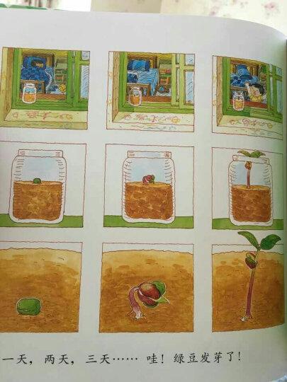 信谊幼儿文学奖:妈妈,买绿豆! 晒单图