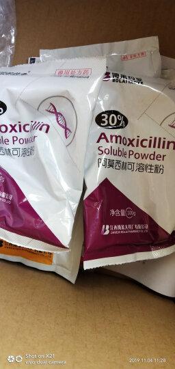 博莱药业(BoLaiYaoYe) 30%阿莫西林可溶性粉鸡白痢禽药猪大肠杆菌兽药抗菌消炎 100g*1袋 晒单图