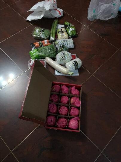小汤山 紫甘蓝 约1000g 新鲜蔬菜 火锅食材 晒单图