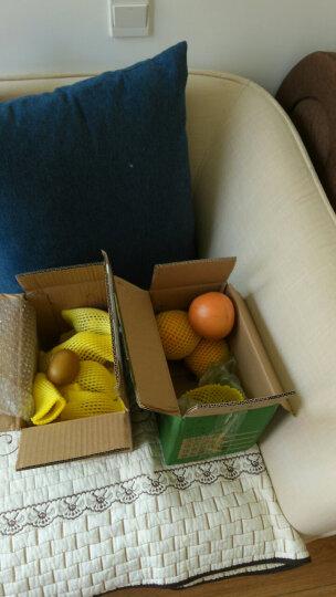 新西兰佳沛阳光金奇异果12个 单果约90-120g 金果猕猴桃新鲜水果 顺丰直达 晒单图